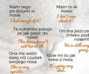 """B1, Frazeologizmy ze słowem """"nos"""""""