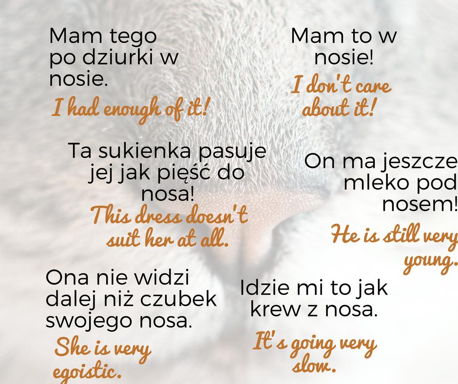 """A2, Frazeologizmy ze słowem """"nos"""""""