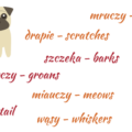 pets in Polish