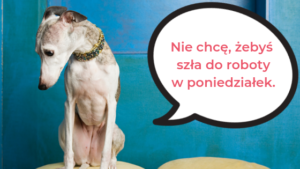 What are the most common colloquial words in Polish?
