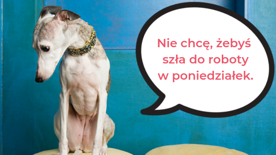 polish colloquial words