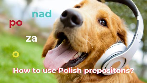 Polish prepositions & cases – explanation / Przyimki i przypadki – wyjaśnienie