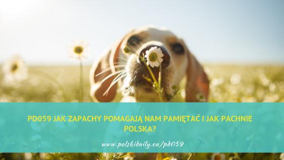 PD059 Jak zapachy pomagają nam pamiętać i jak pachnie Polska?