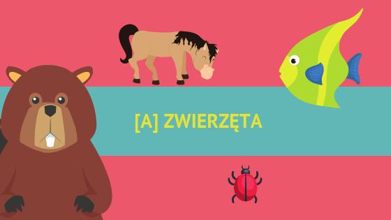 [A] Zwierzęta / Animals
